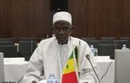 البروفيسور روحان أمبي